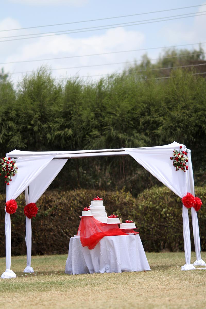 Antonytrivet_Weddingcakecollection (14)